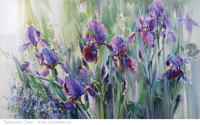 Irises in the grass
