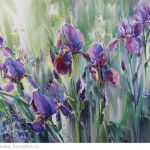Картина Irises in the grass